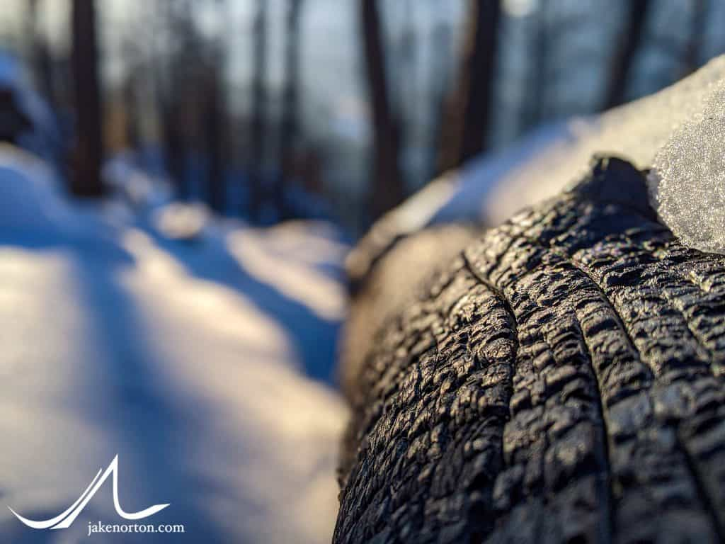 Snow on the burn, Elephant Butte, Colorado.